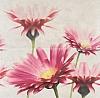 PANEL CREAMY TOUCH COMPOSITION FLOWER 58,3/59,3 cm ( KPL.1 )K.J.OPOCZNO