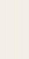 PŁYTKA ŚCIENNA ALL IN WHITE SATYNOWA - SZKLIWIONA REKTYFIKOWANA 29,8/59,8 cm GAT.1 ( OP.1,07 M2 )K.J.TUBADZIN