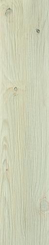 GRES THORNO BIANCO SZKLIWIONY - MATOWY REKTYFIKOWANY 21,5/98,5 gAT.2 ( PAL.38,16 M2 )K.J.PARADYŻ