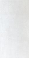 GRES PORCELANOWY FORUM BLANCO 30/60 GAT.I PÓŁPOLER 46FR42P ( OP.1,08 M2 ) GRESPANIA